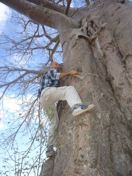 Pingándome en un baobad
